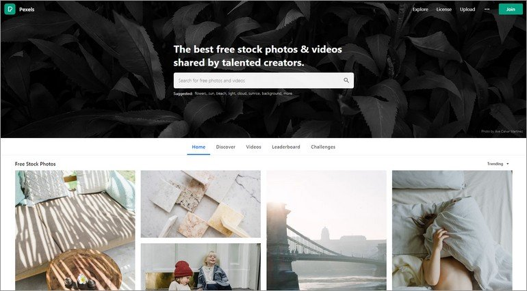 Pexels' large selection with hundreds of thousands of free stock photos is ideal for all kind of websites.