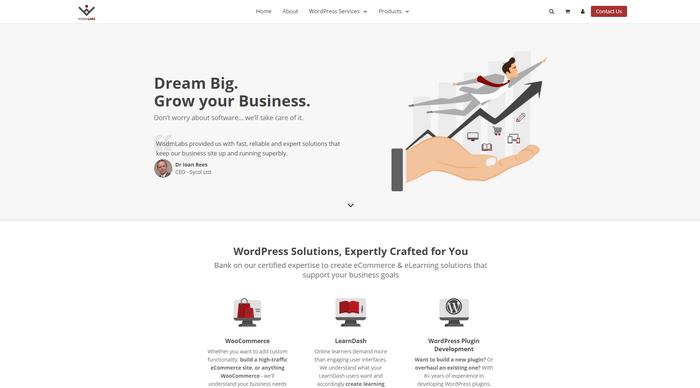 WisdmLabs make plugins for WooComeerce, LearnDash, and WordPress.