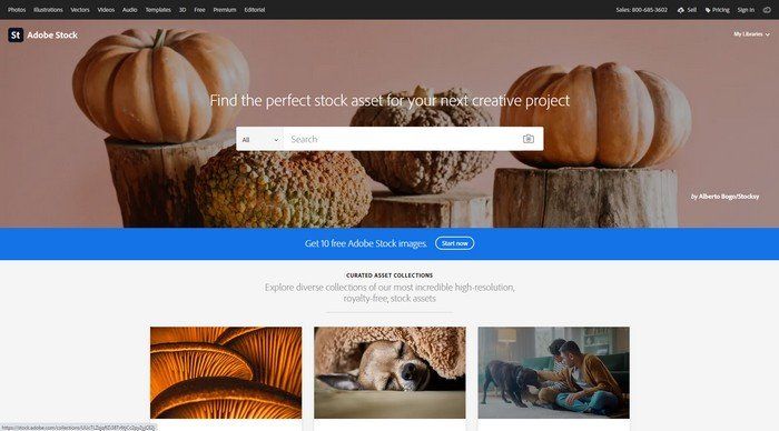 Adobe Stock has ton of resources that you can use for all kinds of projects and websites.